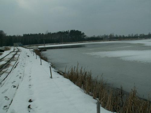 Zima na stawach