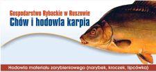 Karp Ruszów