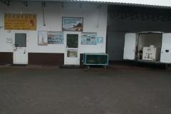 sprzedaz-ryb